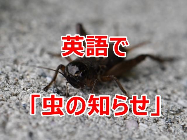 英語で虫の知らせ
